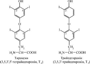 L-thyroxin szedése és a fogyás